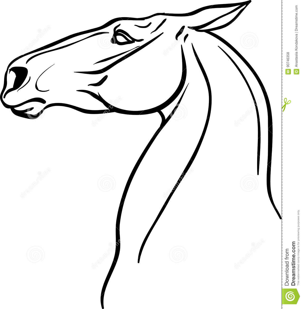 Horse Head For Coloring Book