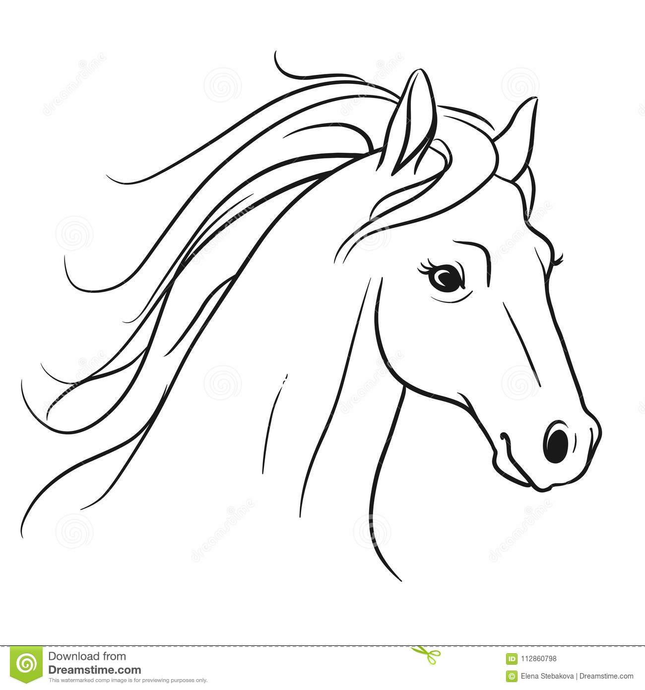 Horse Head With Flowing Mane Portrait Side View Pen And Ink Sty Stock Illustration Illustration Of Mammal Coloring 112860798