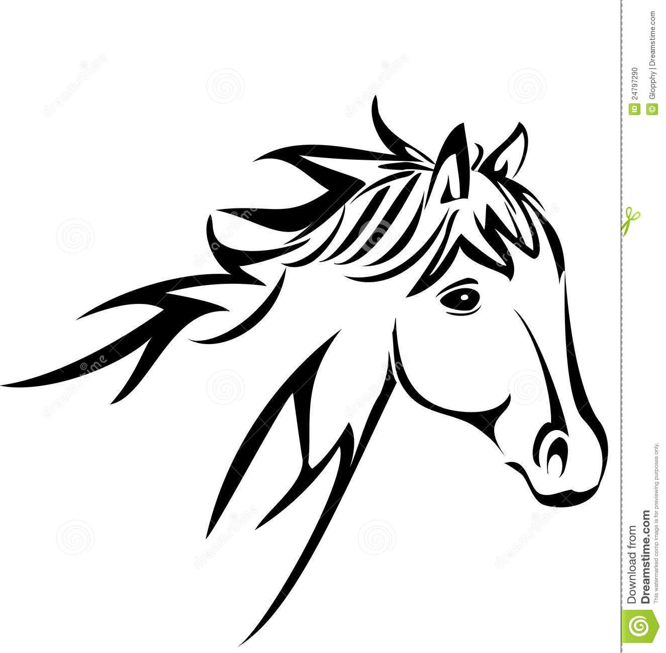 Mustang Horse Amazoncom