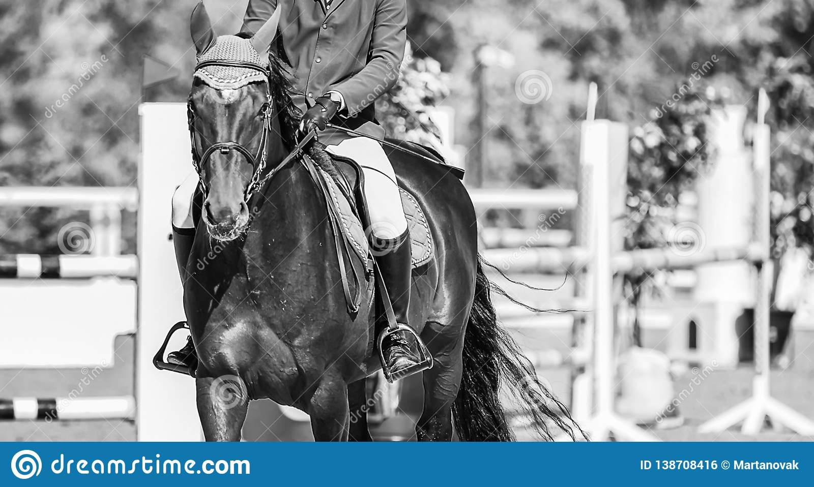 Horse Horizontal Black And White Banner For Website Header Poster Wallpaper Monochrome Design Stock Photo Image Of Jockey Human 138708416