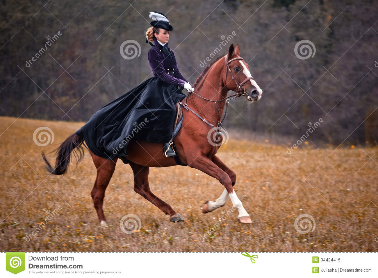 Horse-hunting With Ladies In Riding Habit Editorial Image - Image ...
