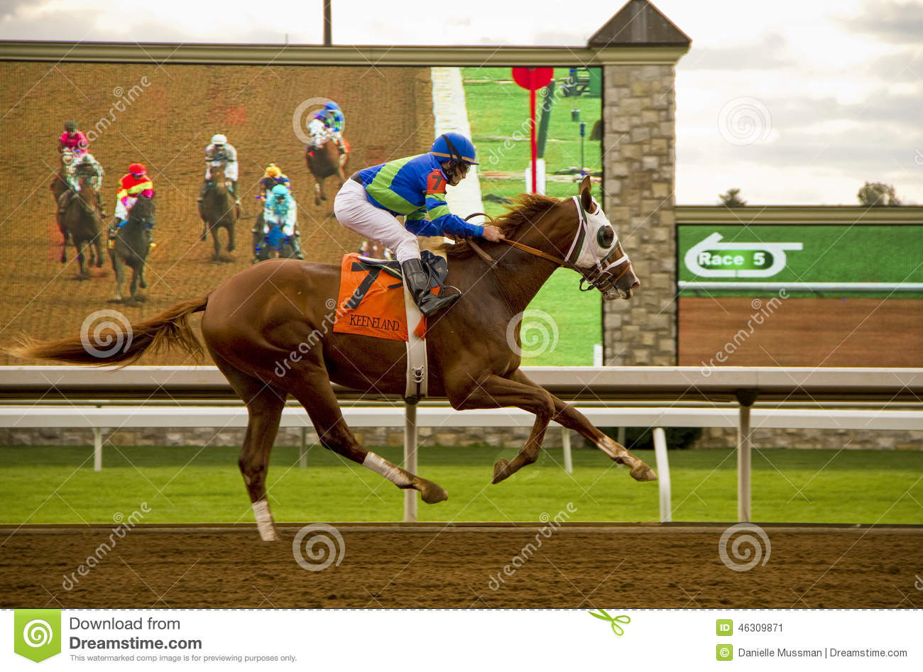 Download Horse And Jockey Galloping Past Screen Editorial Photo