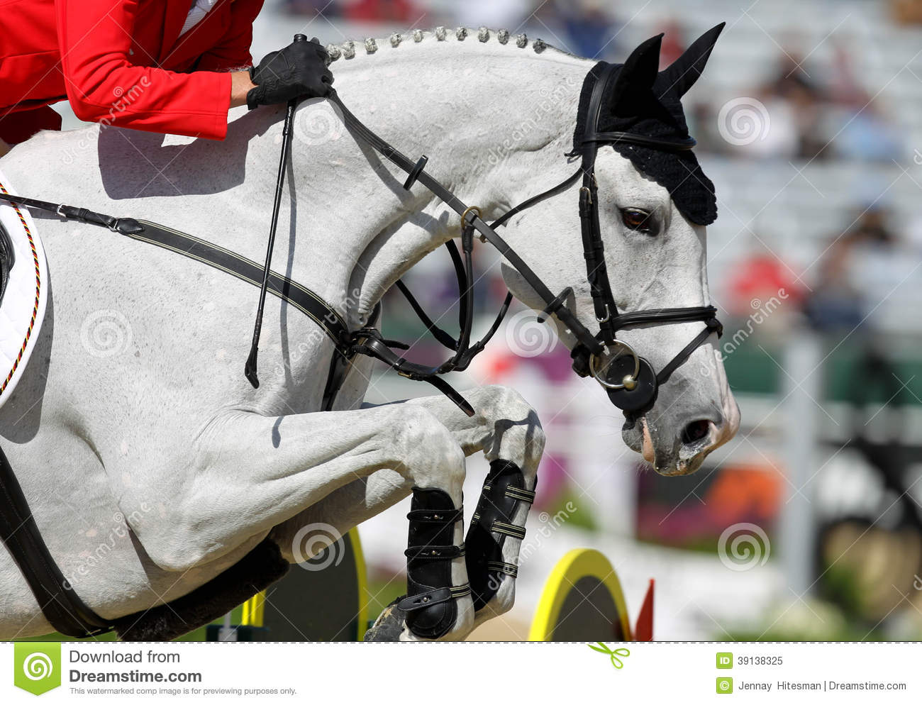 Horse Jumping Stock Photo - Image: 39138325