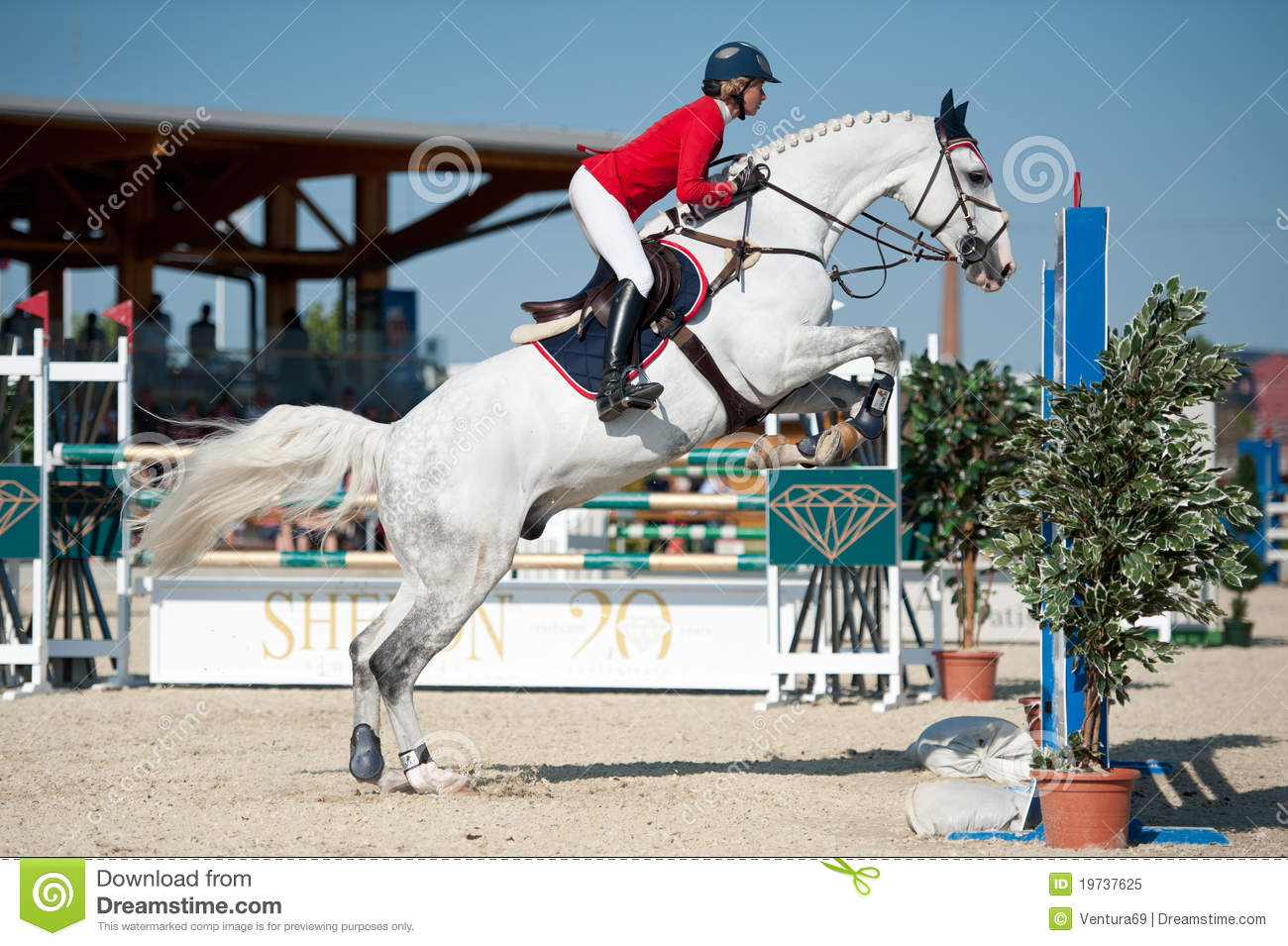 horse jumping competition in pezinok slovakia editorial image image of professional agility. Black Bedroom Furniture Sets. Home Design Ideas