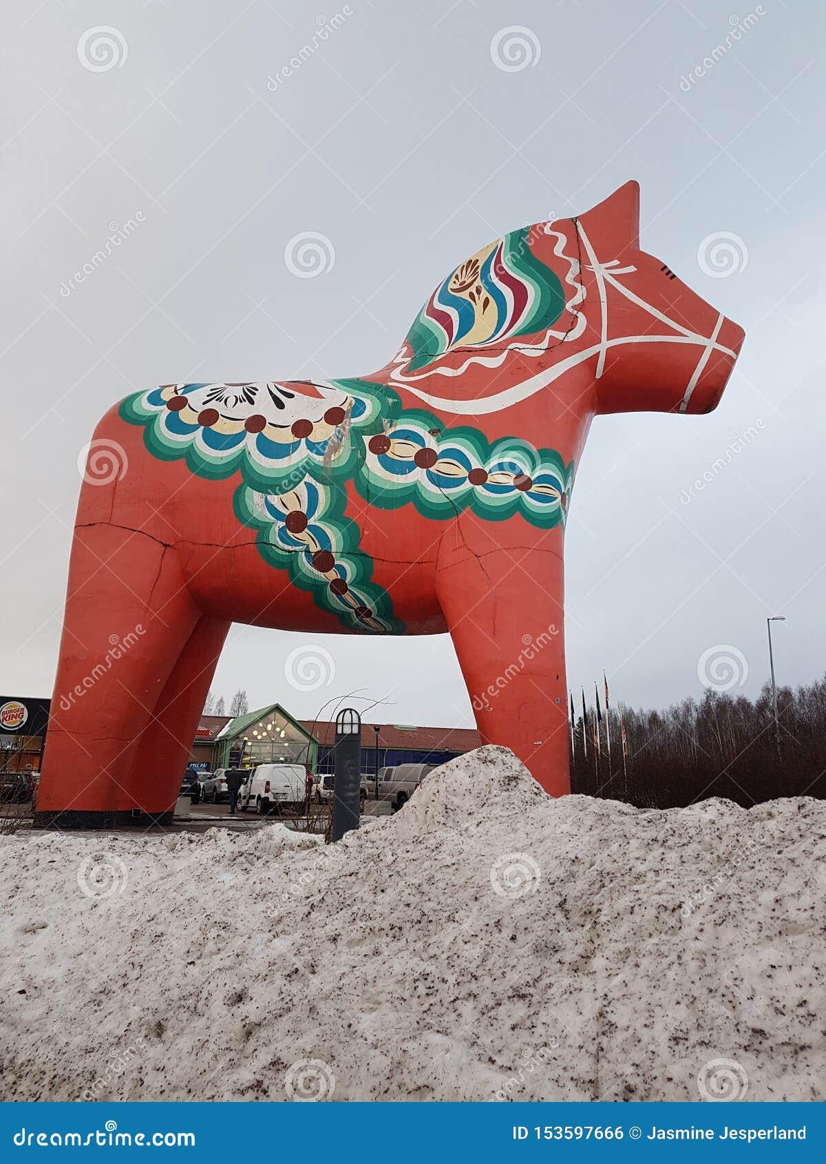 Horse in north Sweden.