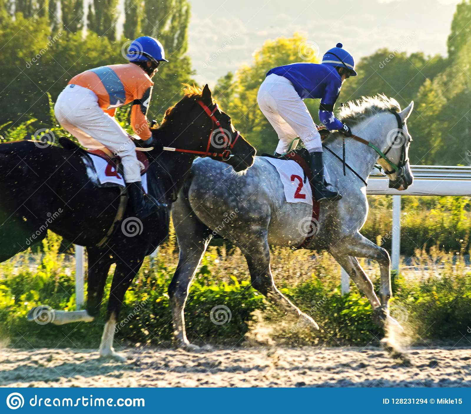 Horse race for the prize of Zakritia.