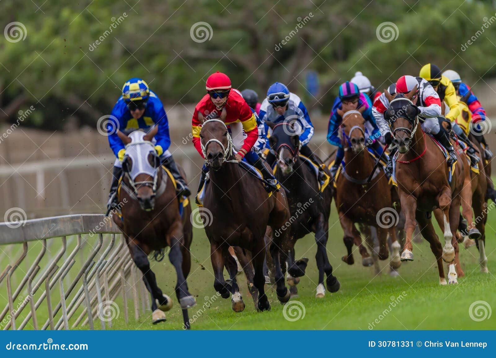 Greyville horse racing betting mine bitcoins freebsd