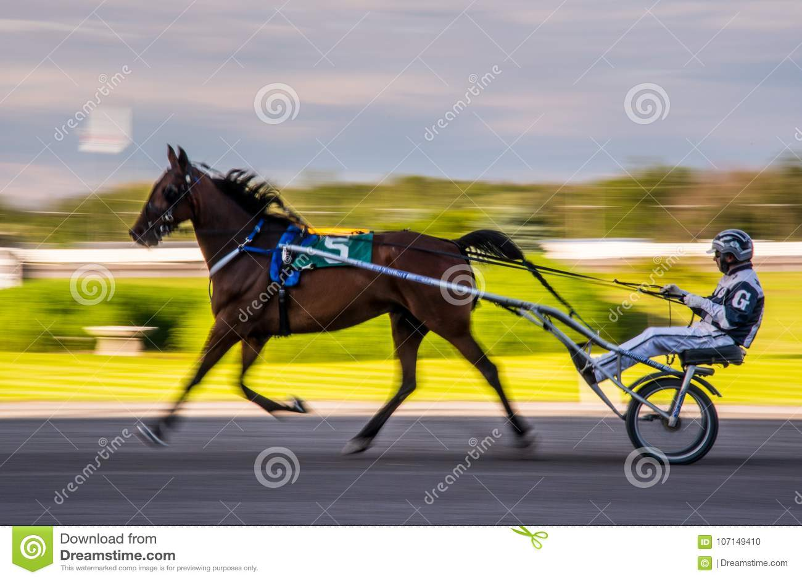 Ottawa Horse Racing