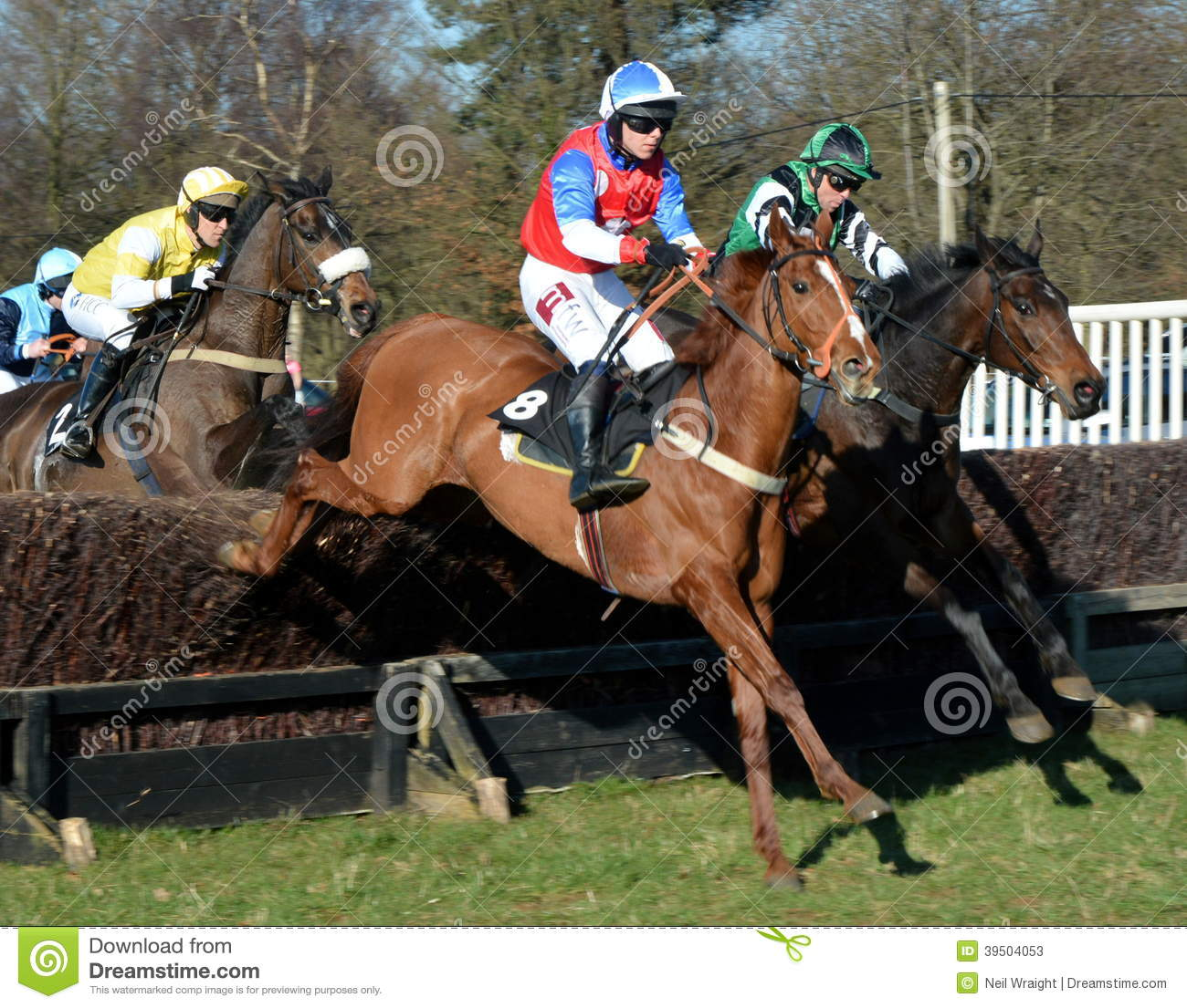 Horse racing over fences
