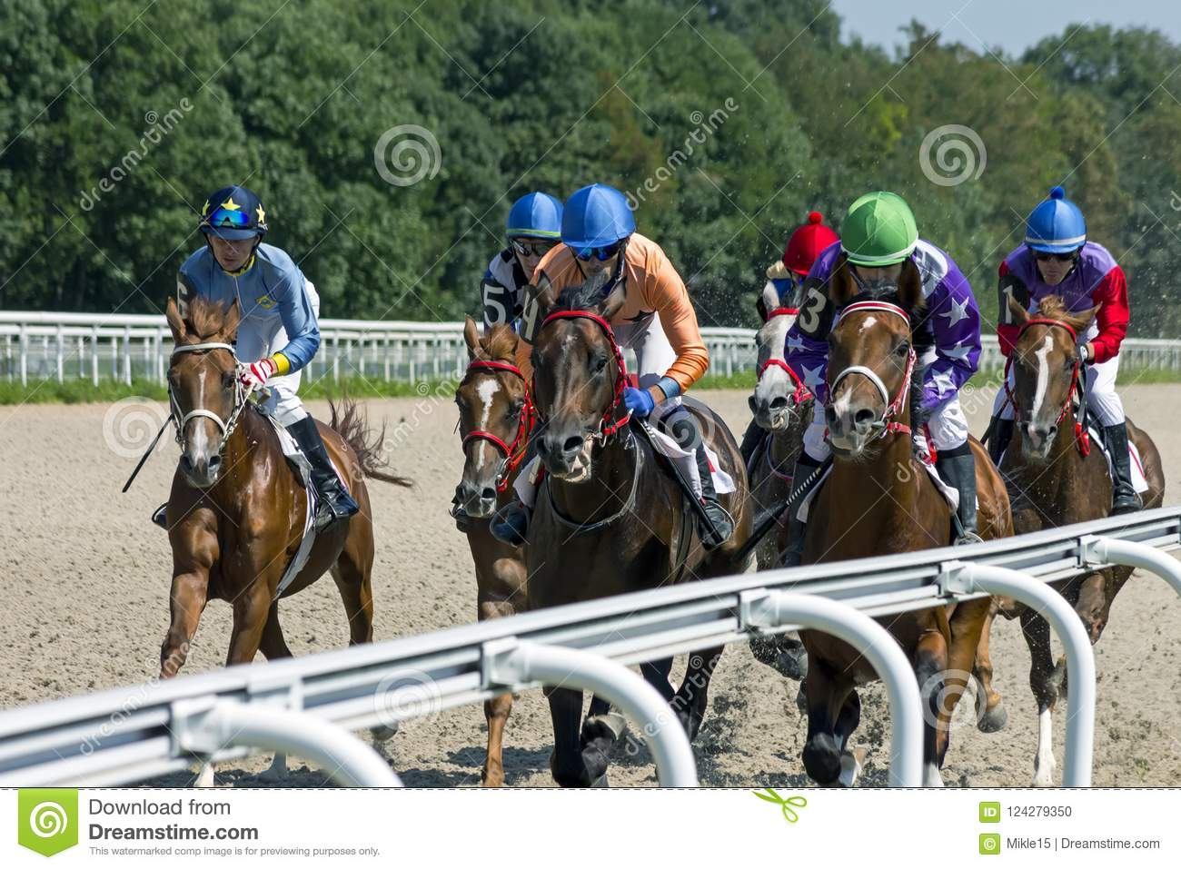 Horse racing for the prize of Budennogo in Pyatigorsk.
