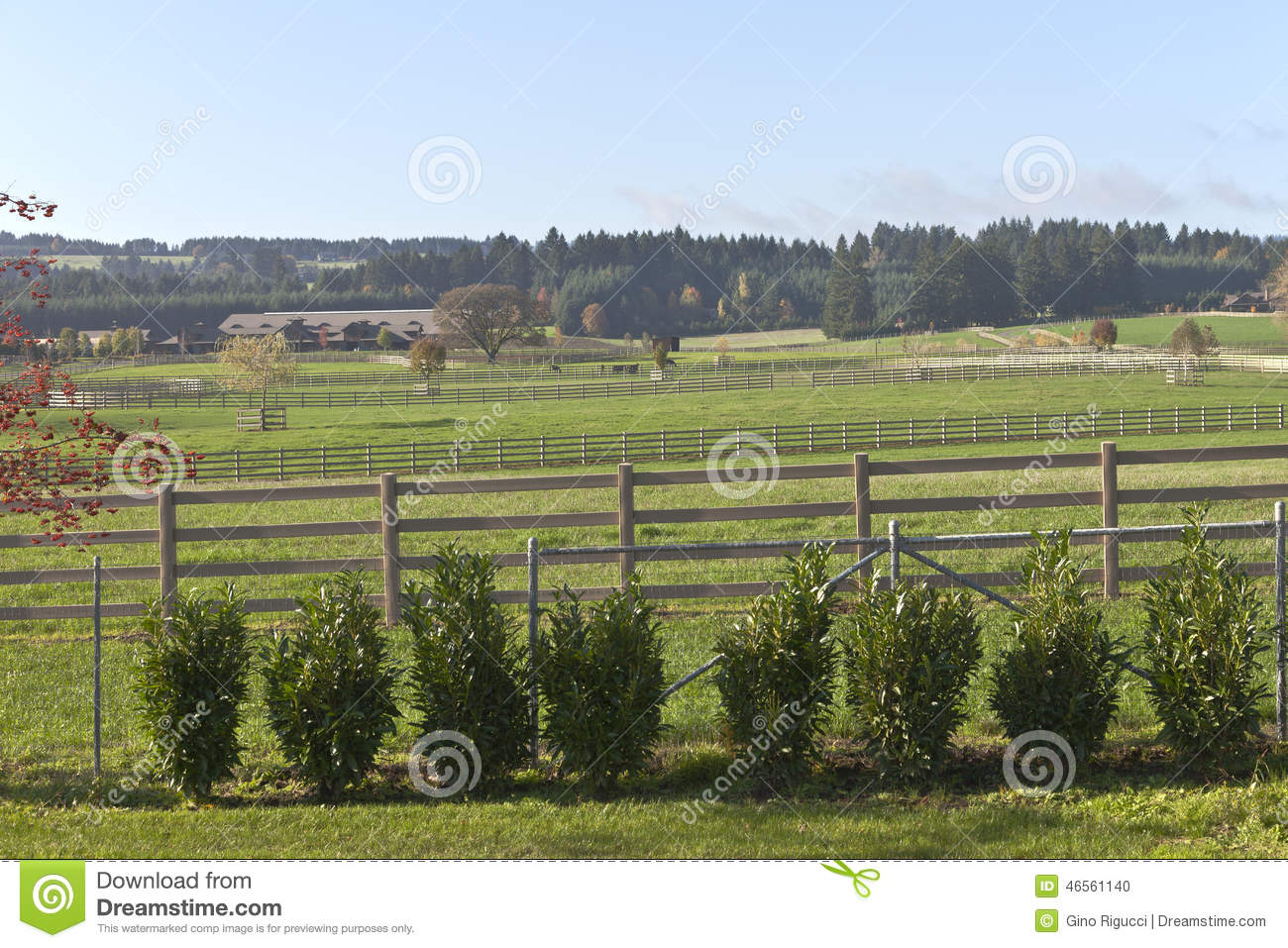 horse ranch and country living rural oregon stock photo
