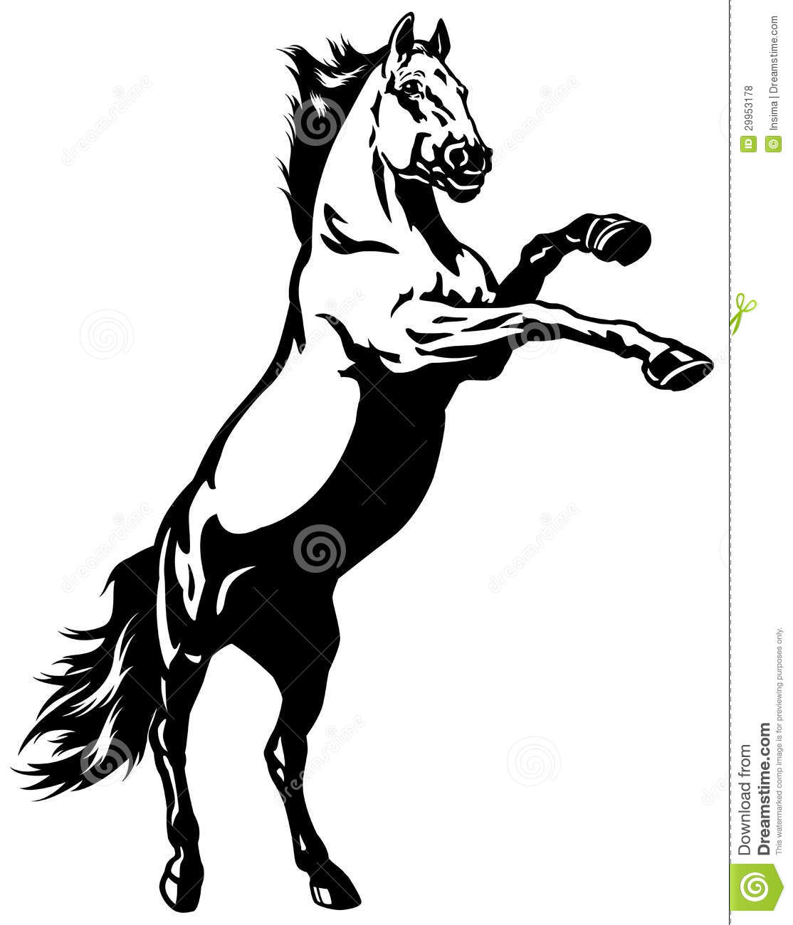 Rearing Mustang Stock Vector Illustration Of Horse Pony 29953178