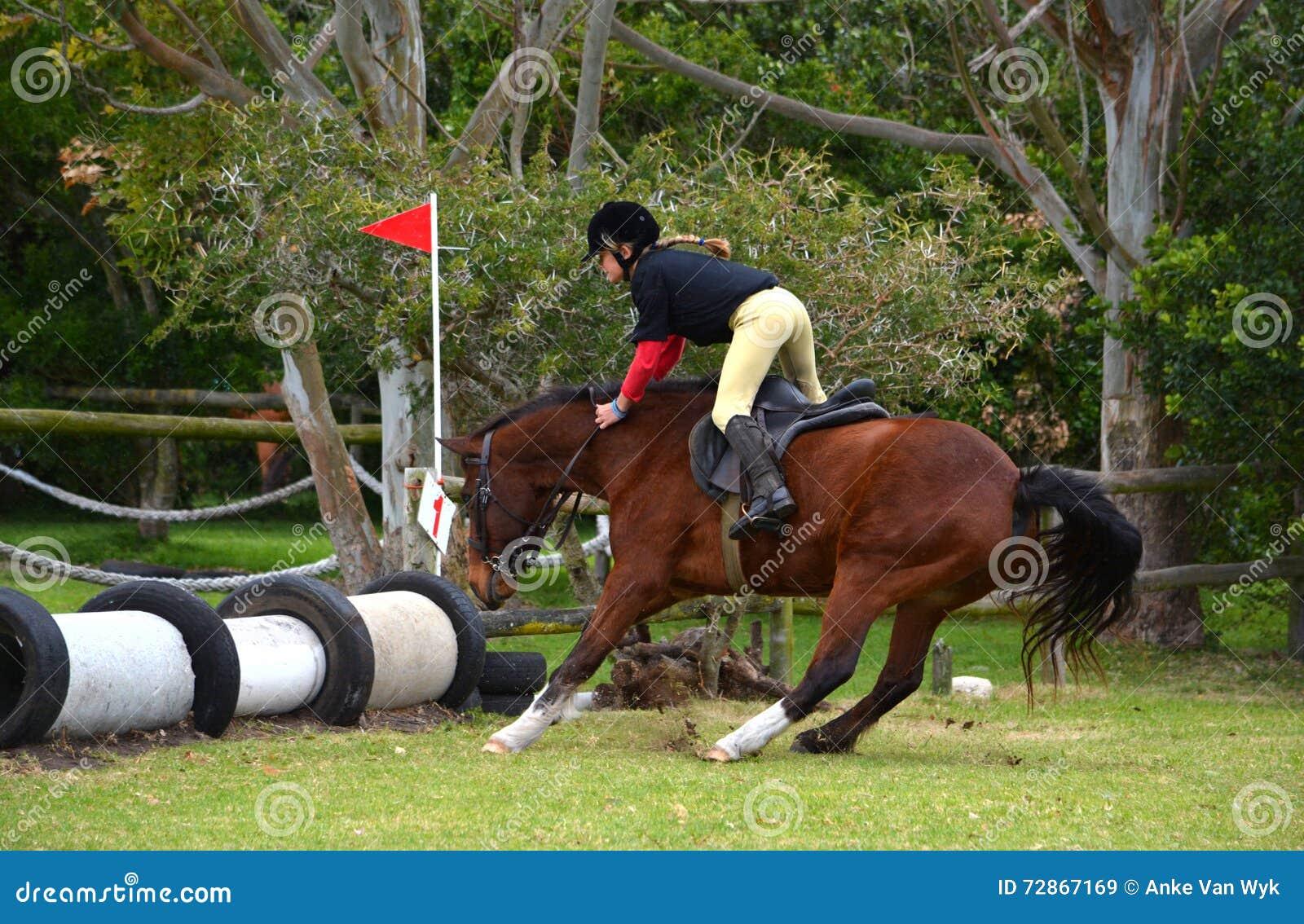 Horse Refusing Jump Stock Photo Image 72867169
