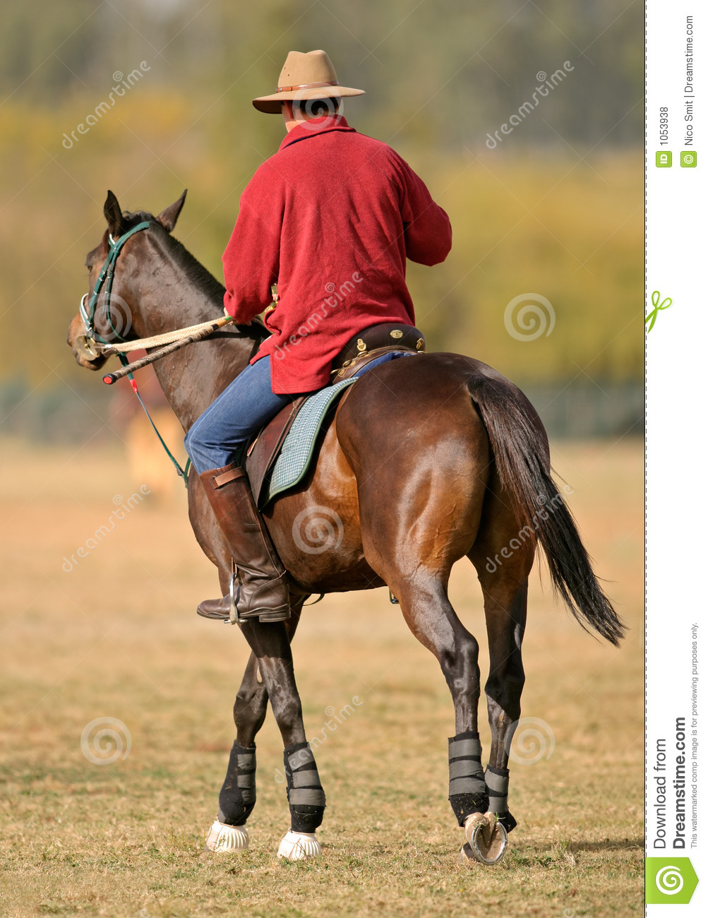 Horse And Rider Royalty Free Stock Photos - Image: 1053938