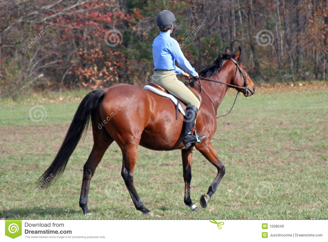 Horse Rider Stock Image Image Of Autumn Fall Ride