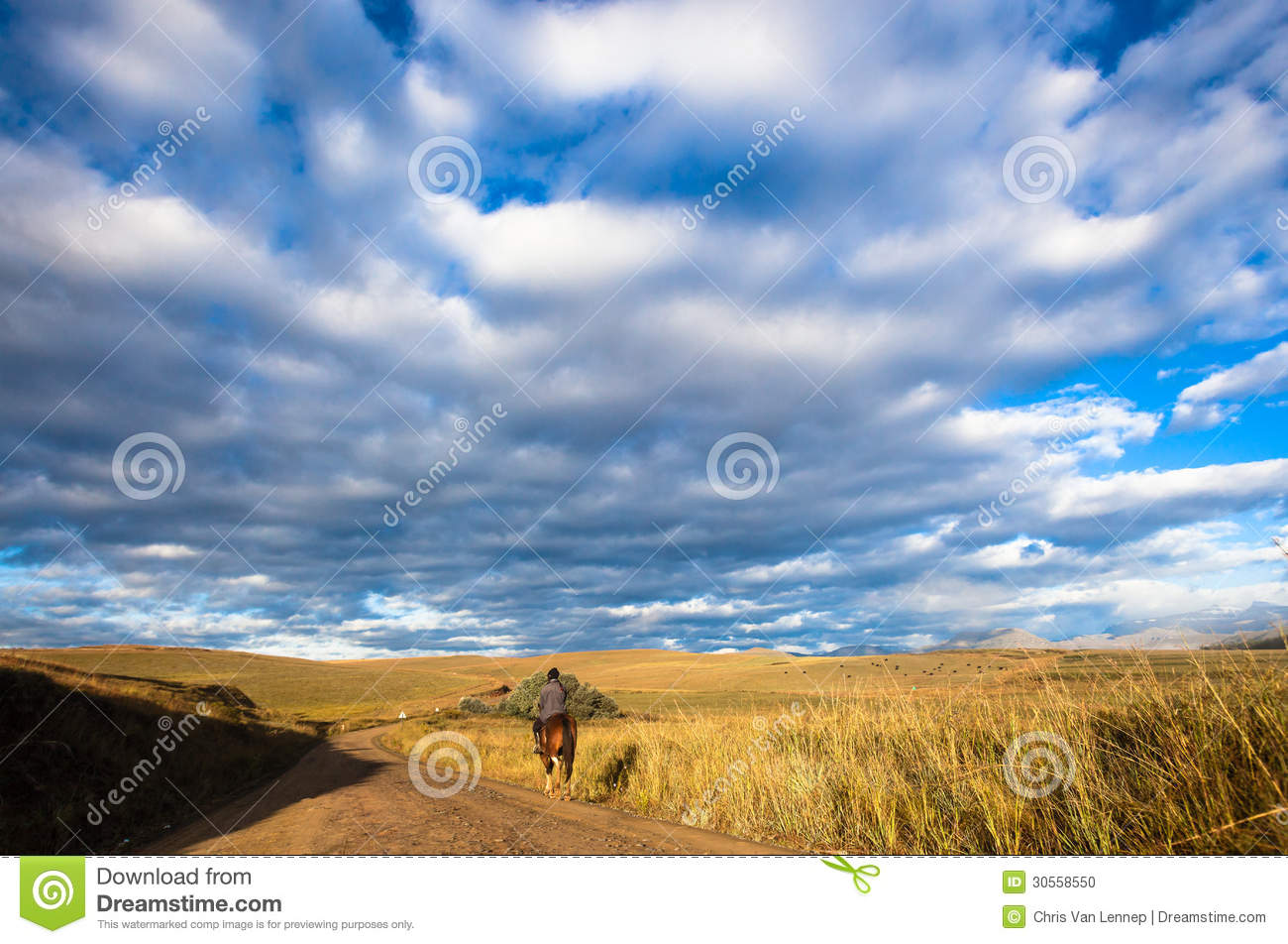 Rider and horse on a dirt road head to their farm in colorful terrain    Early Morning Sky Mountains