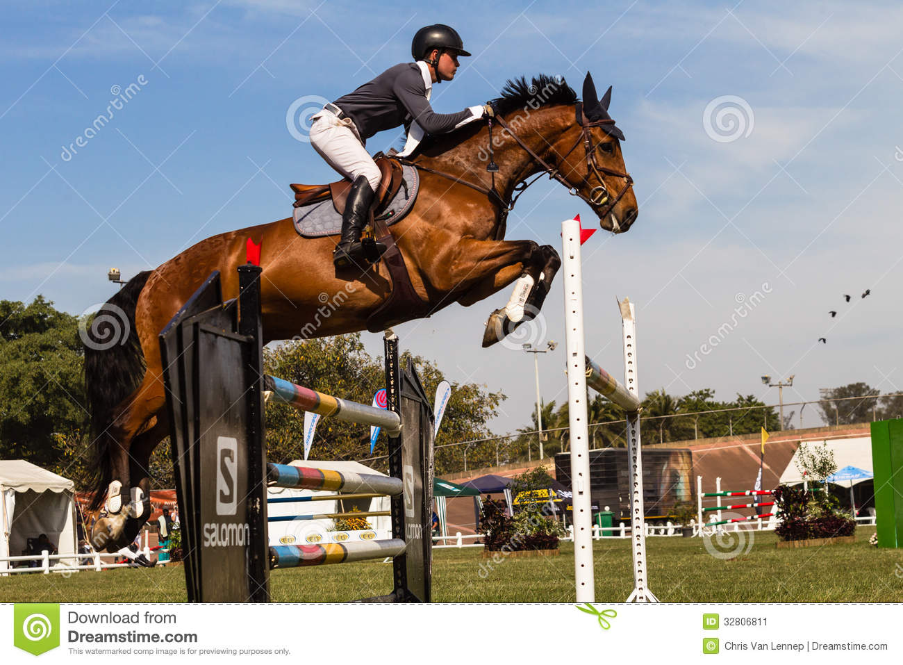 Horse Rider Gate Jump Flight Color Editorial Photo Image Of Male Equestrian 32806811
