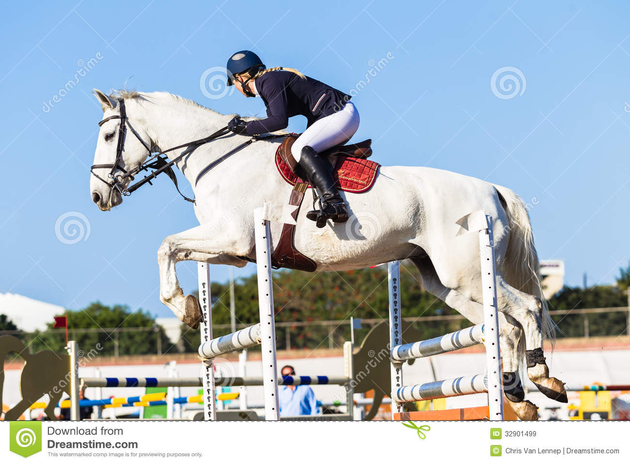 Horse Rider Jump Girl Blue editorial stock image. Image of ...