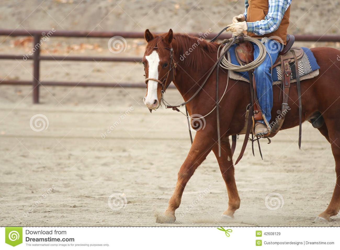 Download A horse and rider. stock image. Image of horse, views - 42608129