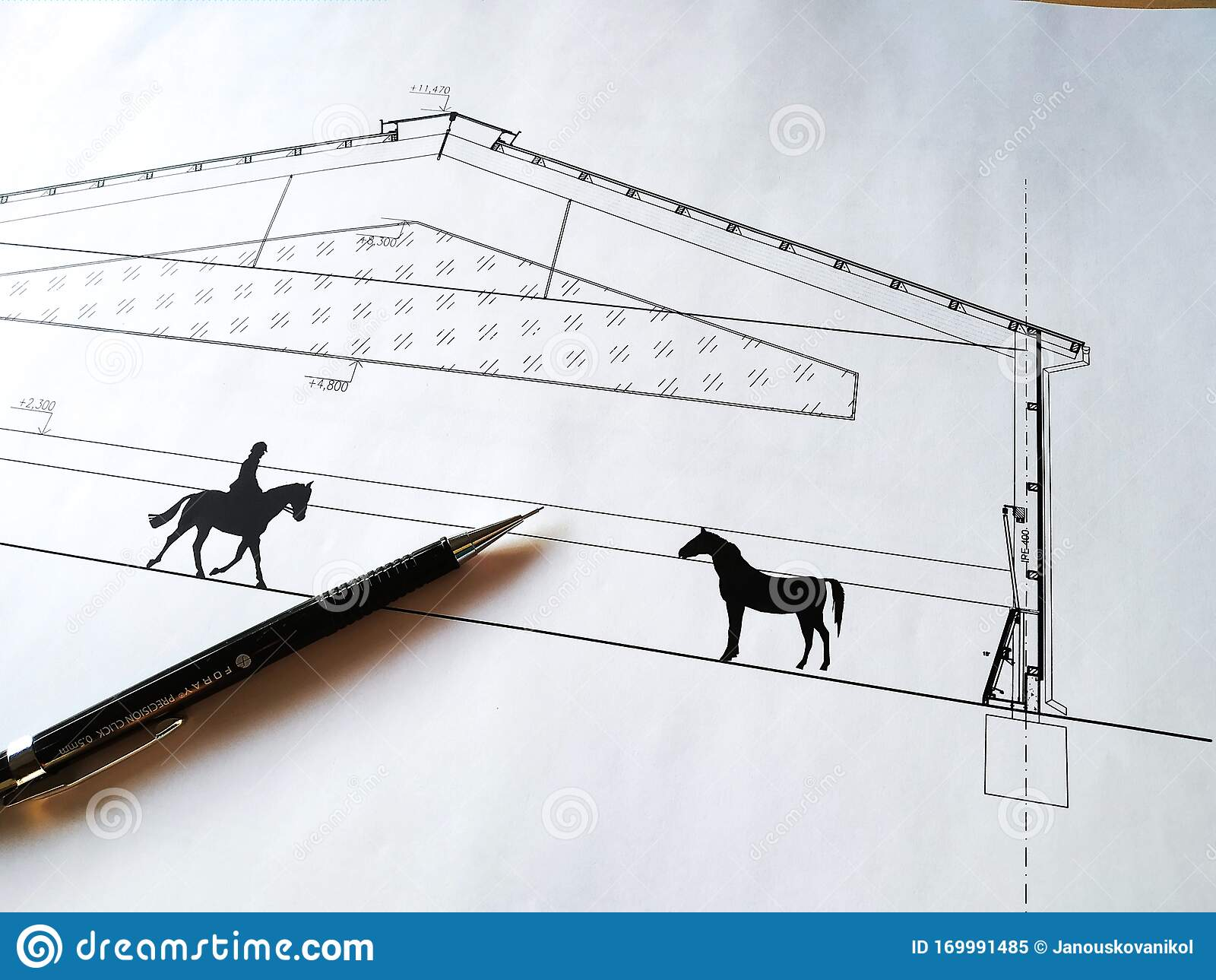 Horse Drawing Pencil Photos Free Royalty Free Stock Photos From Dreamstime