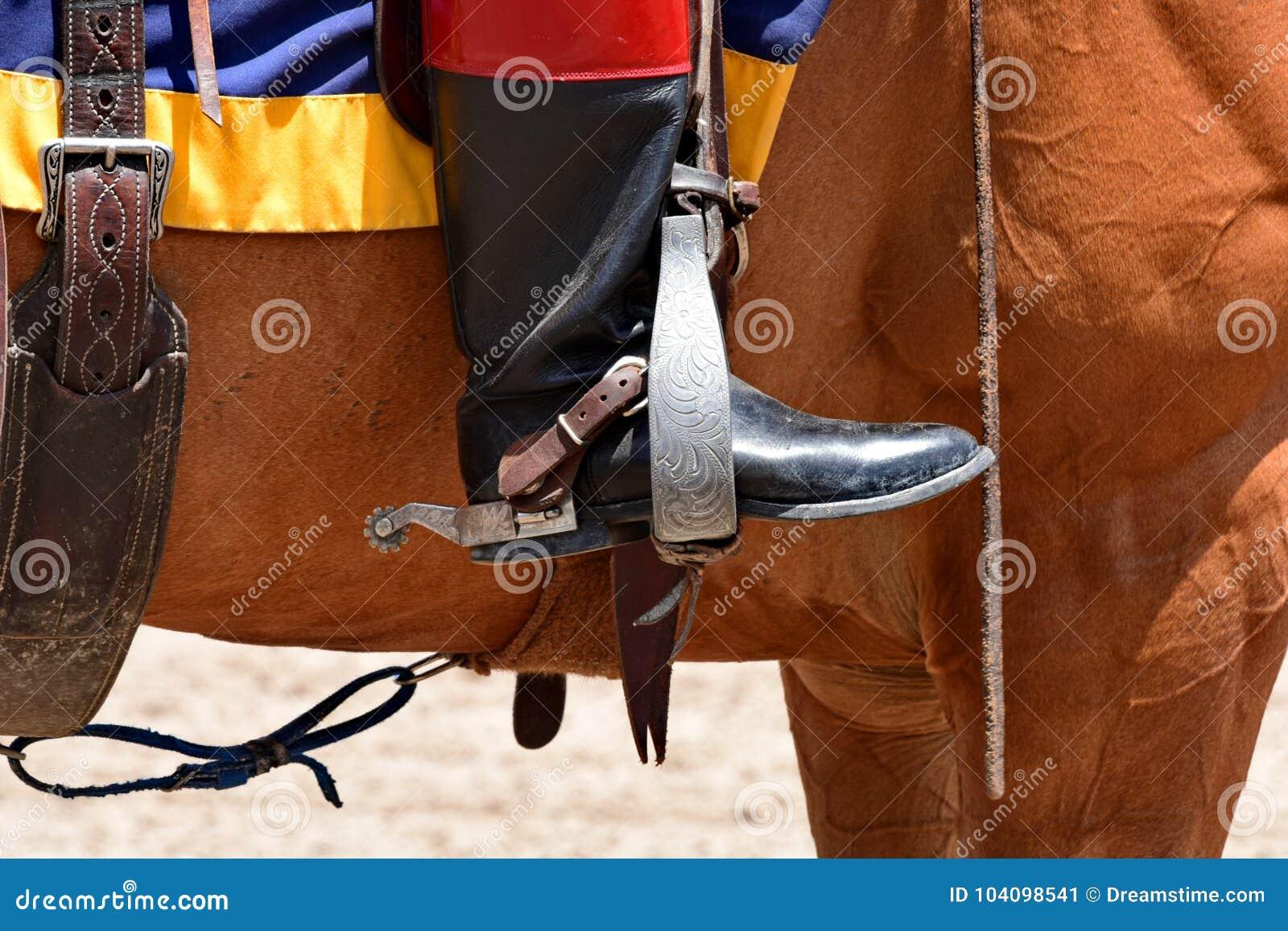 Horse Riding Gear Stock Image Image Of Riding Saddle 104098541