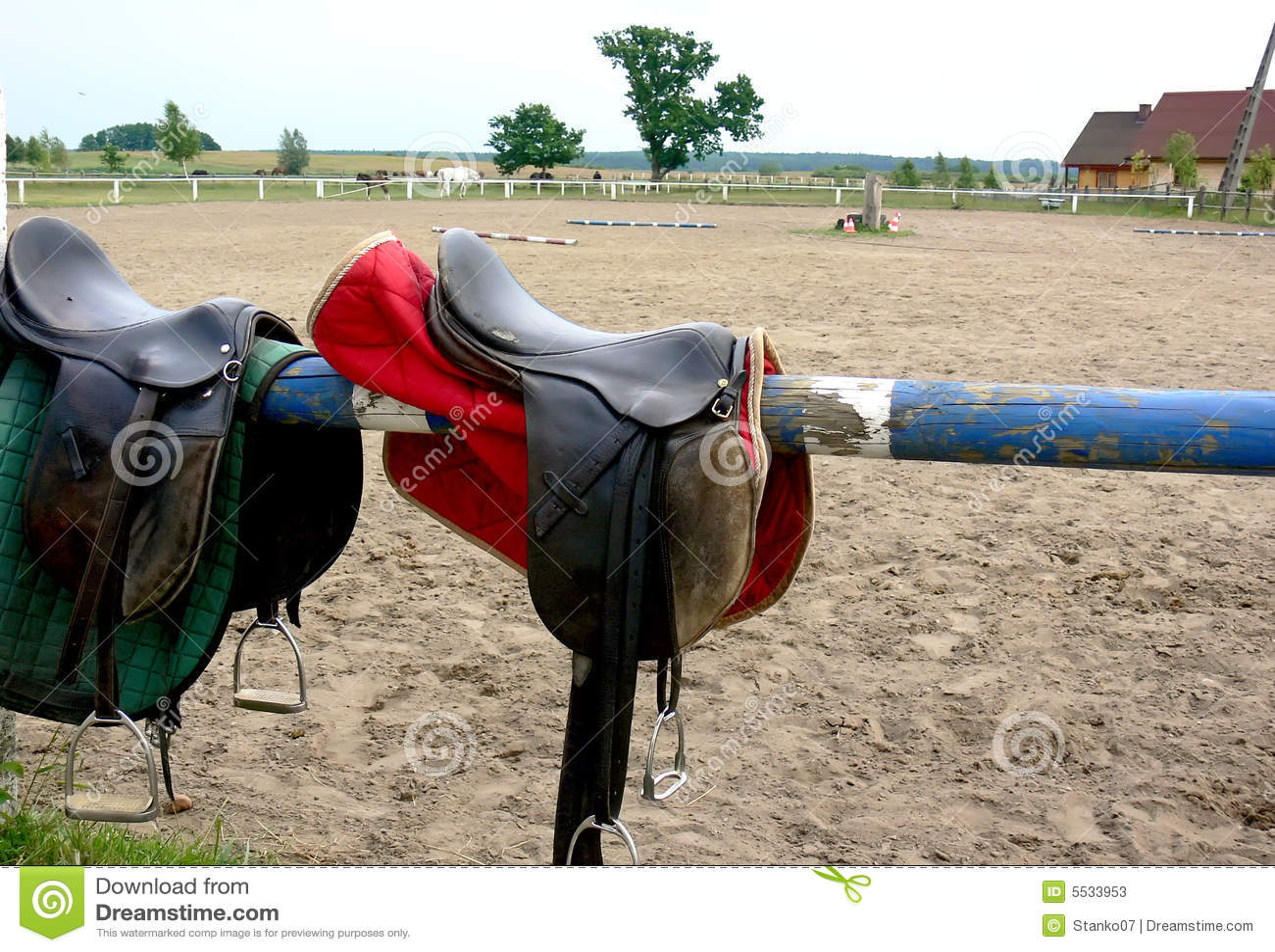 Horse riding item