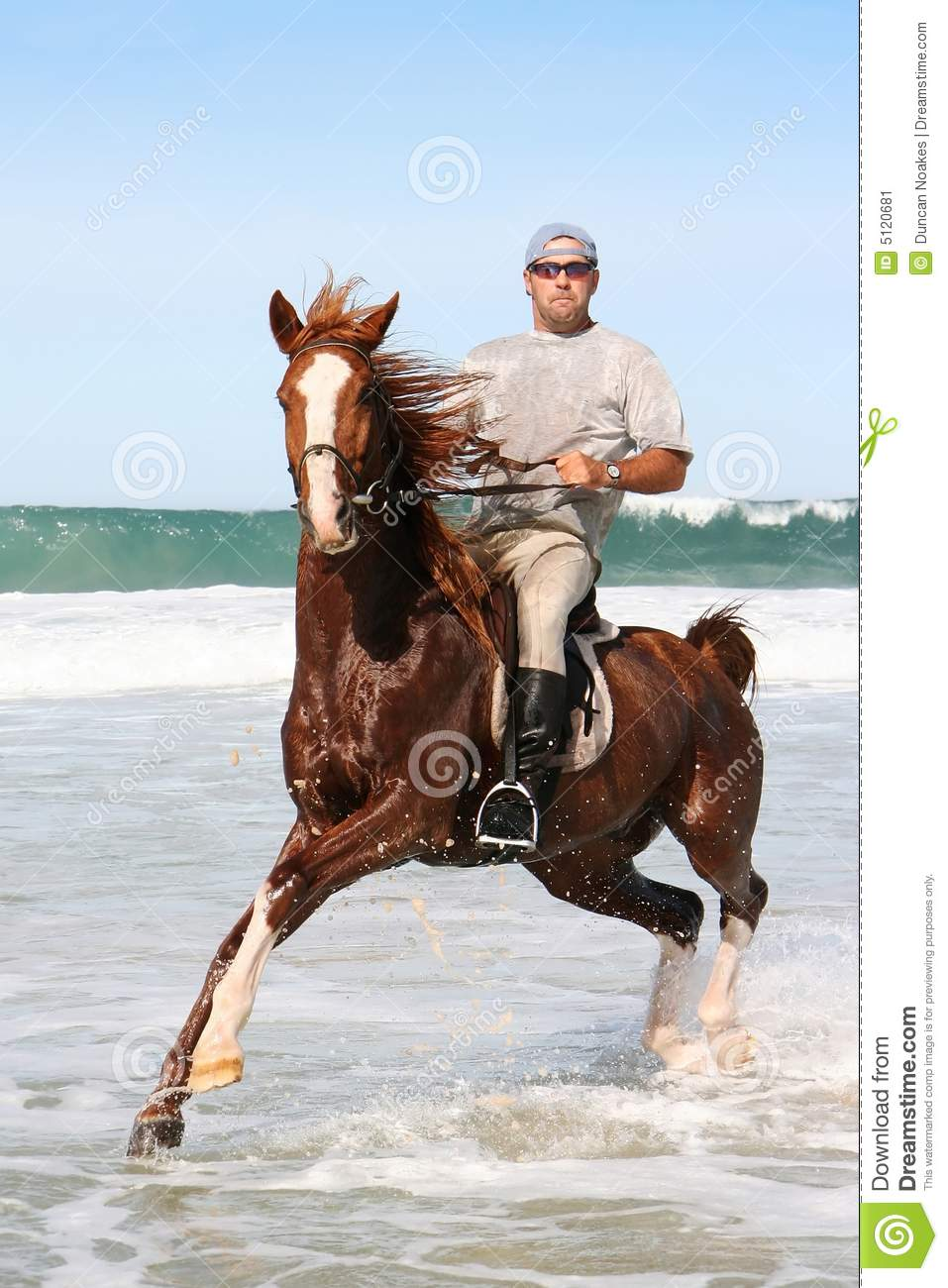 Horse Riding In Sea Stock Image Image 5120681