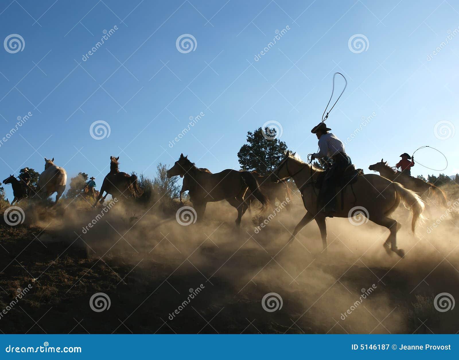 Horse Roundup at Dusk
