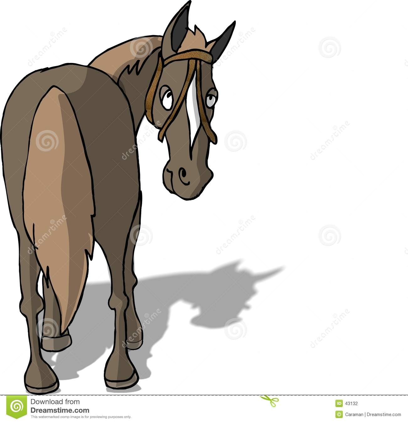 Horse s back