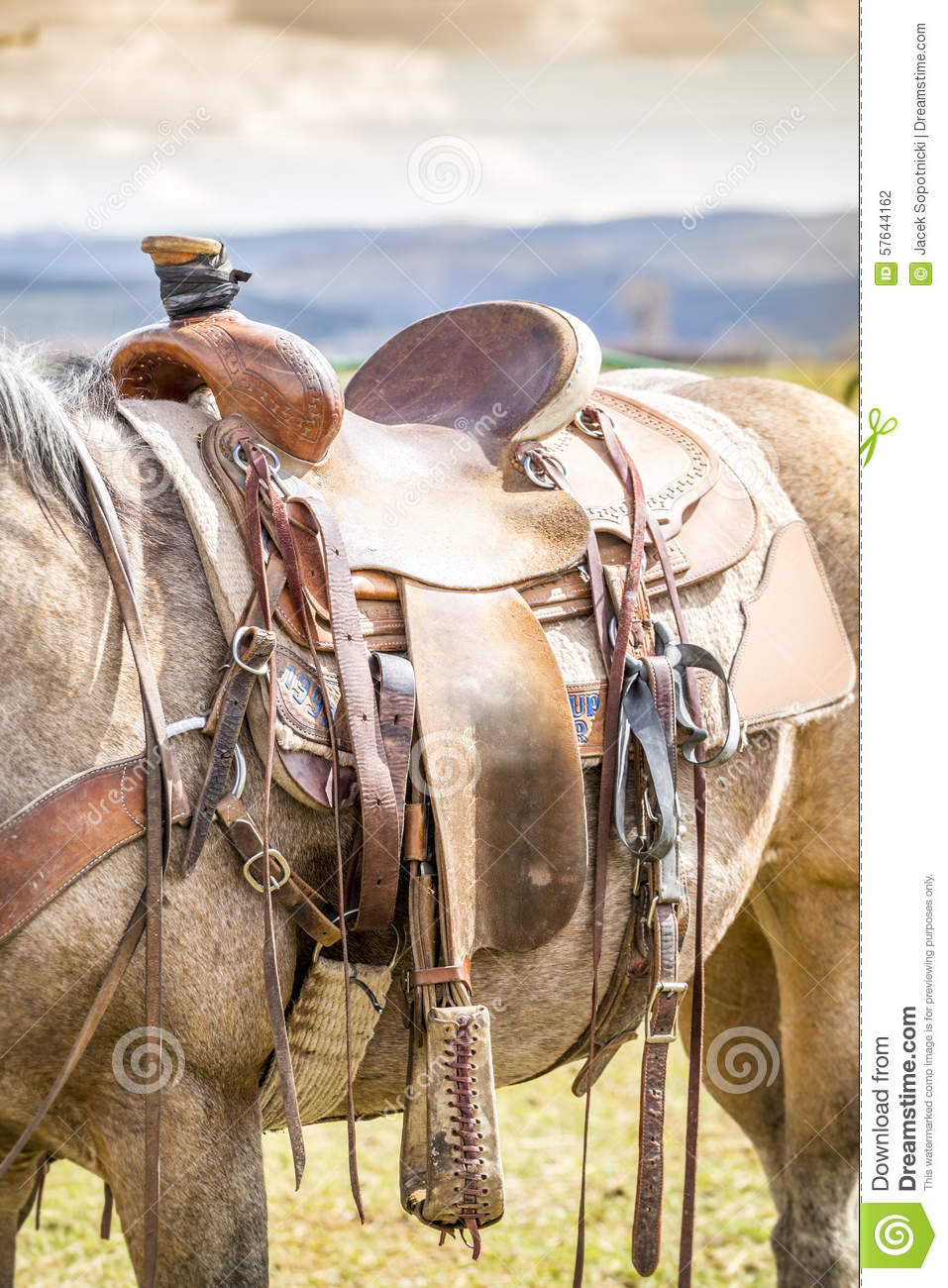 Horse Saddle On The Ranch Stock Photo Image Of Equine