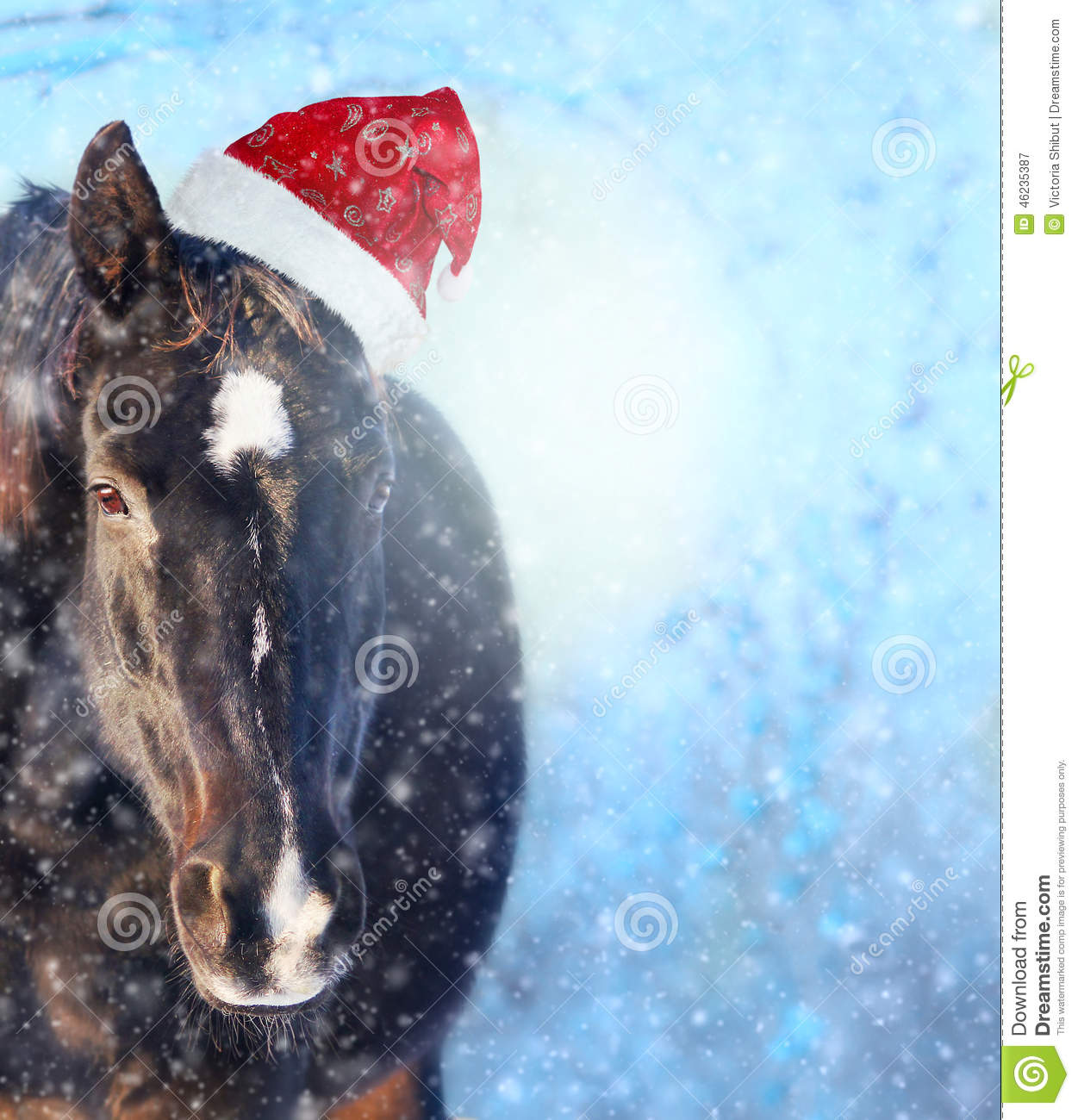 Horse With Santa Hat In Showfall Christmas Background