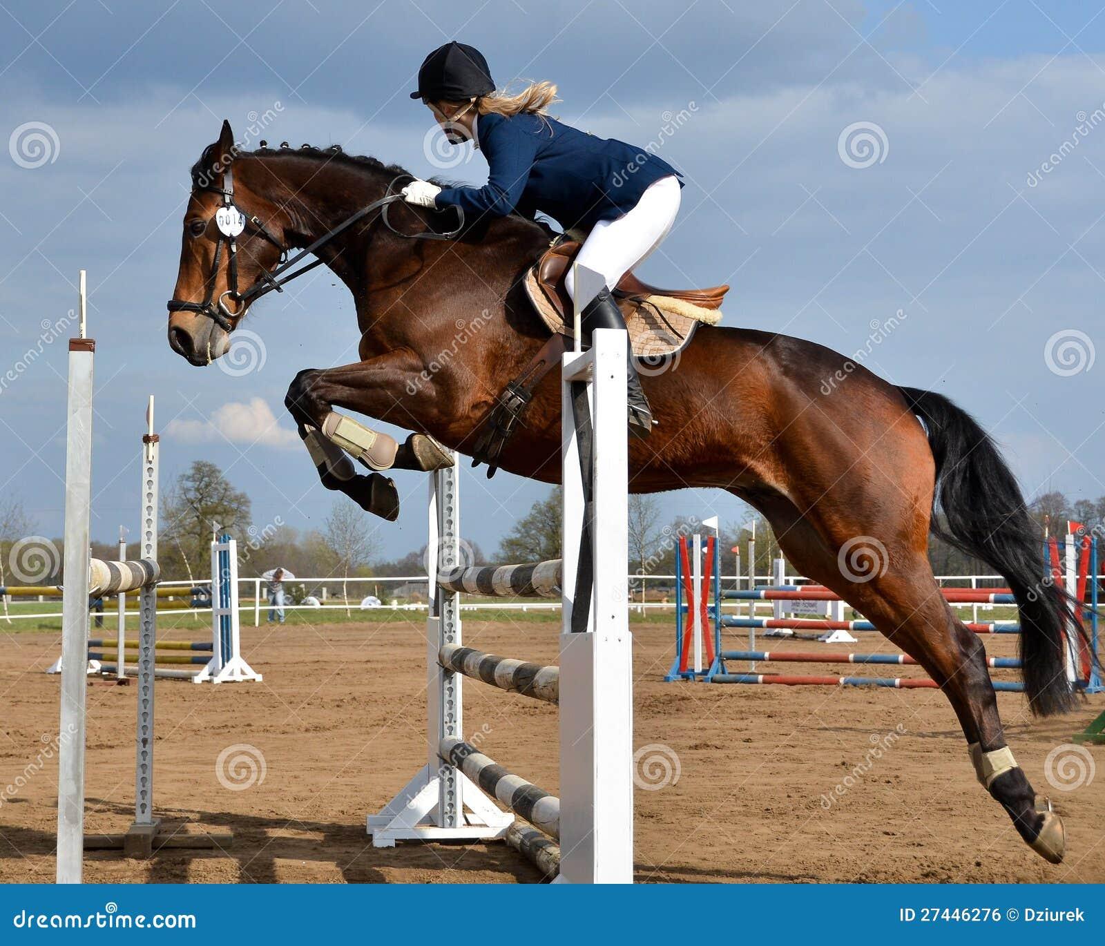 Horse Show Jump...