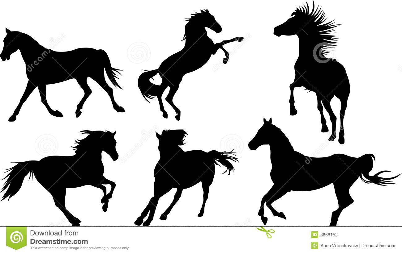 horse silhouette collection stock photography image 8668152