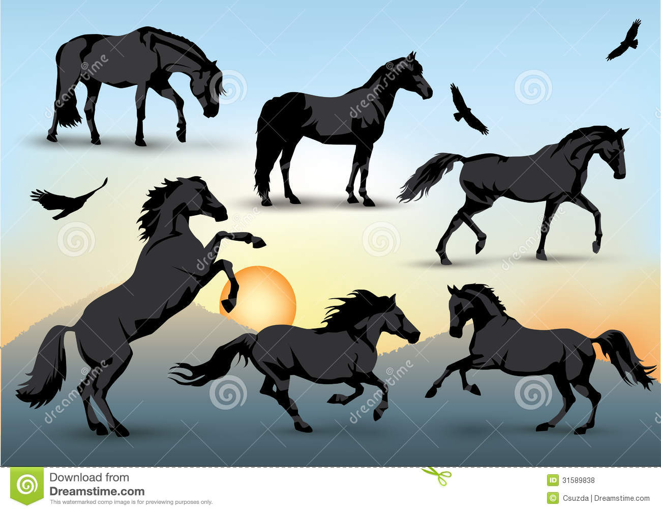 Horse Silhouettes Stock Vector Image Of Stand Stallion