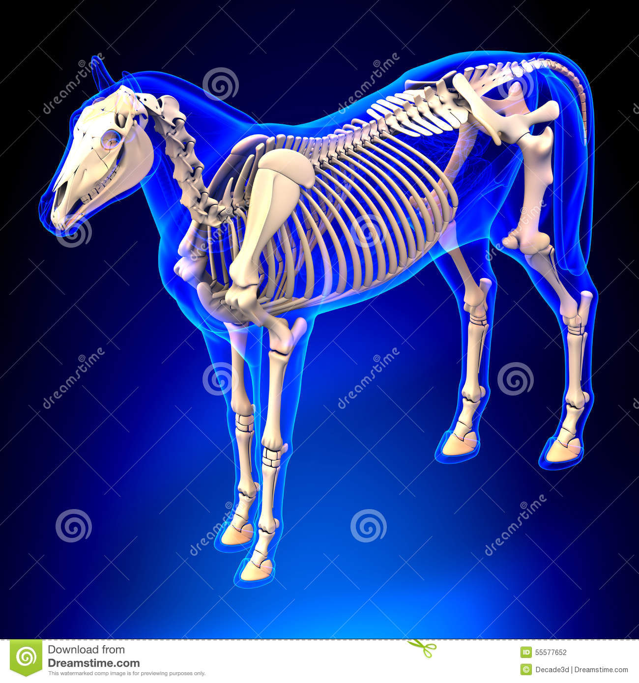 equus themes The sims 3 the sims 3 pets sims 3 horses sims 3 equestrian sims 3 edits equus sims equus community equus-sims arklowfields 8 notes themes jobs legal terms.