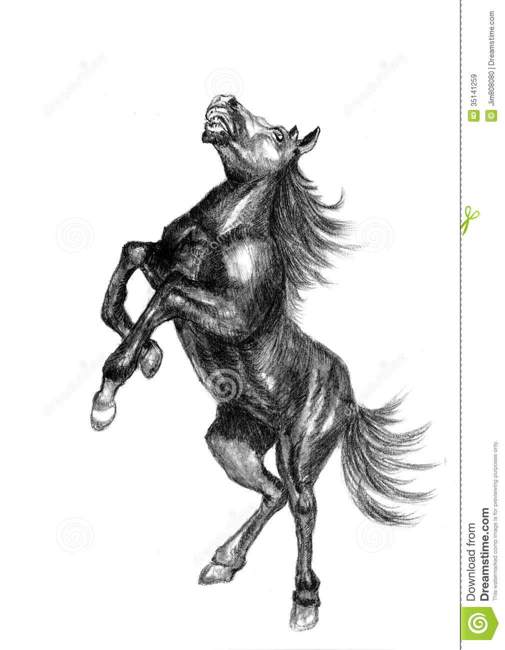 Horse Sketch Royalty Free Stock Images - Image: 35141259
