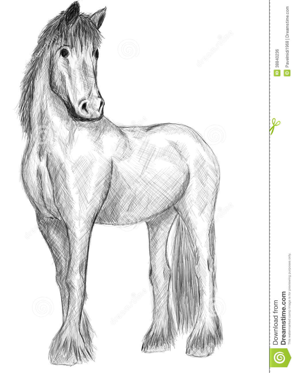 Standing Horse Drawing on 888 html