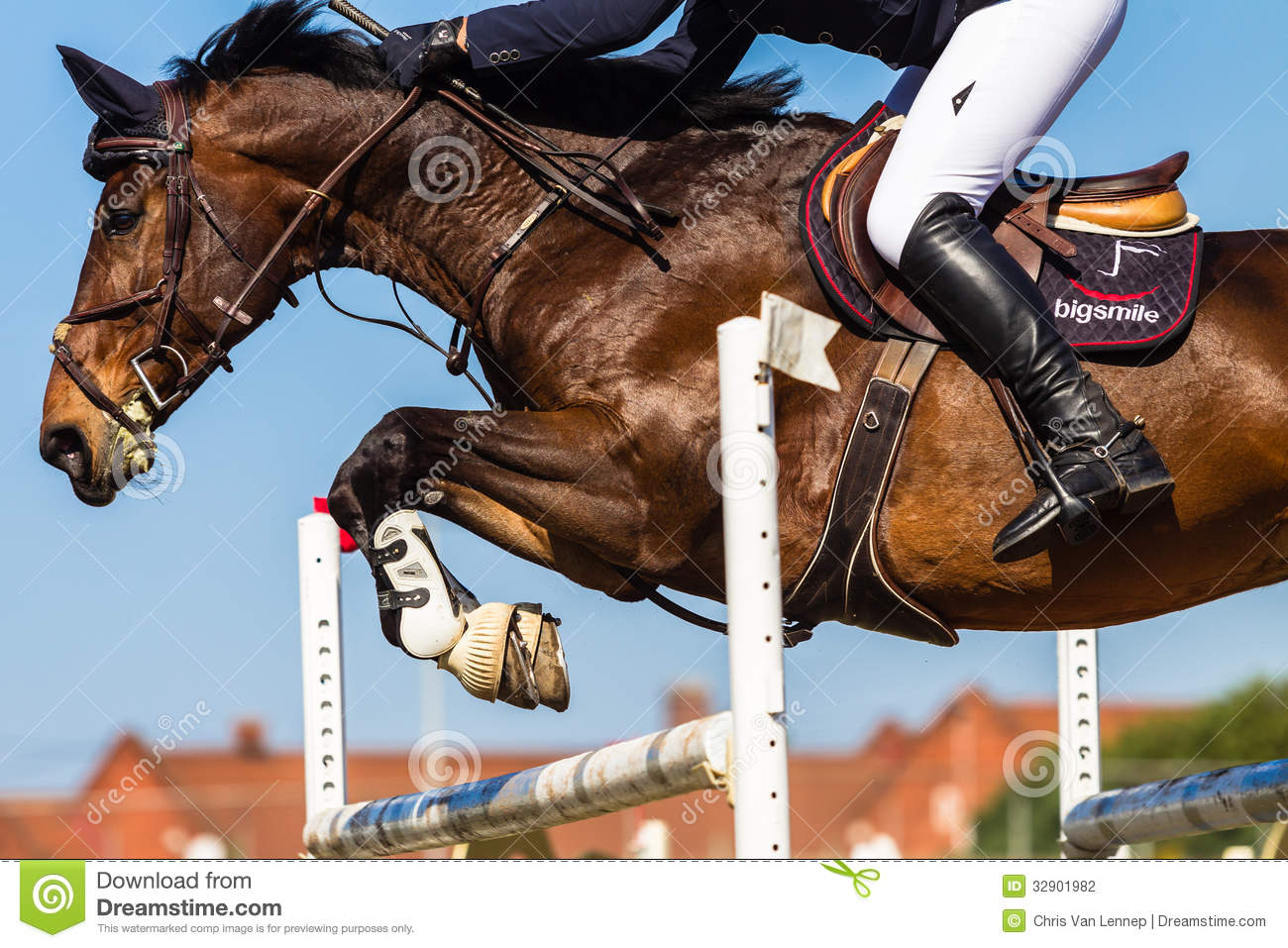 Horse Headless Rider Jump editorial photography. Image of ...