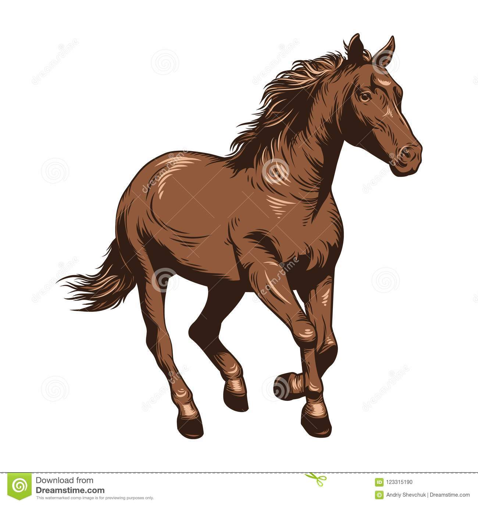 Beautiful Horse Drawing Color Stock Illustrations 5 050 Beautiful Horse Drawing Color Stock Illustrations Vectors Clipart Dreamstime