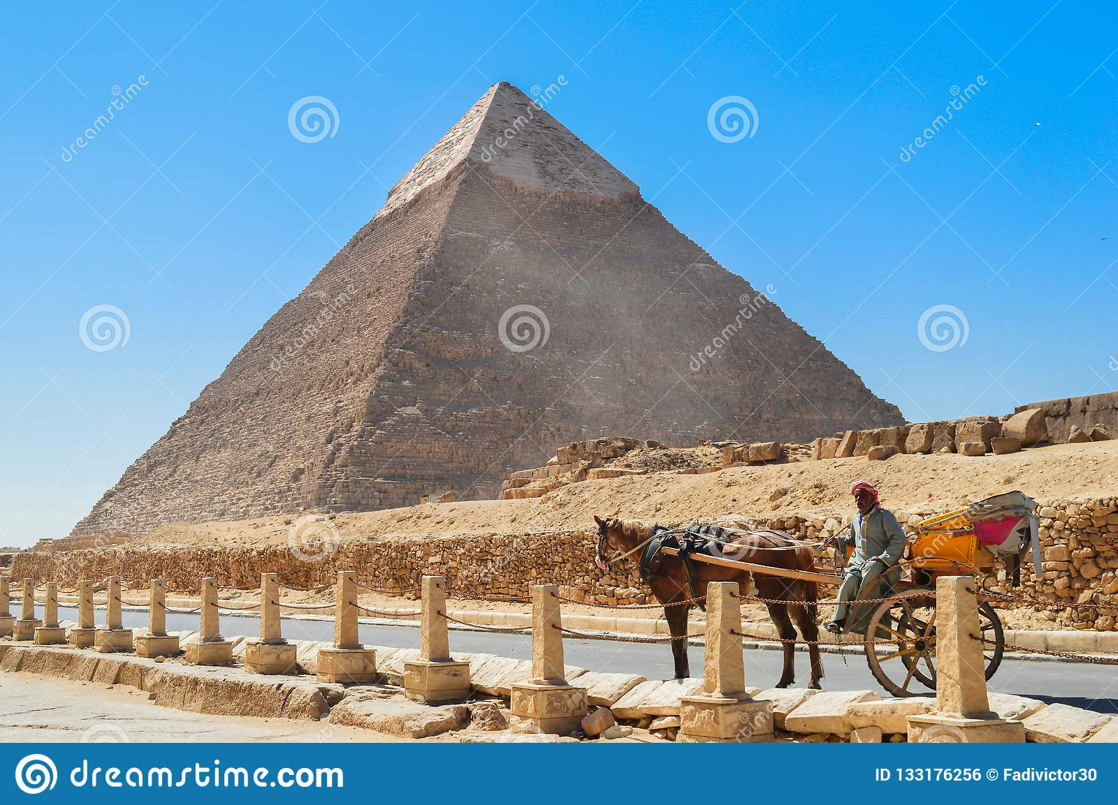 Horse Wagon at Giza Pyramids