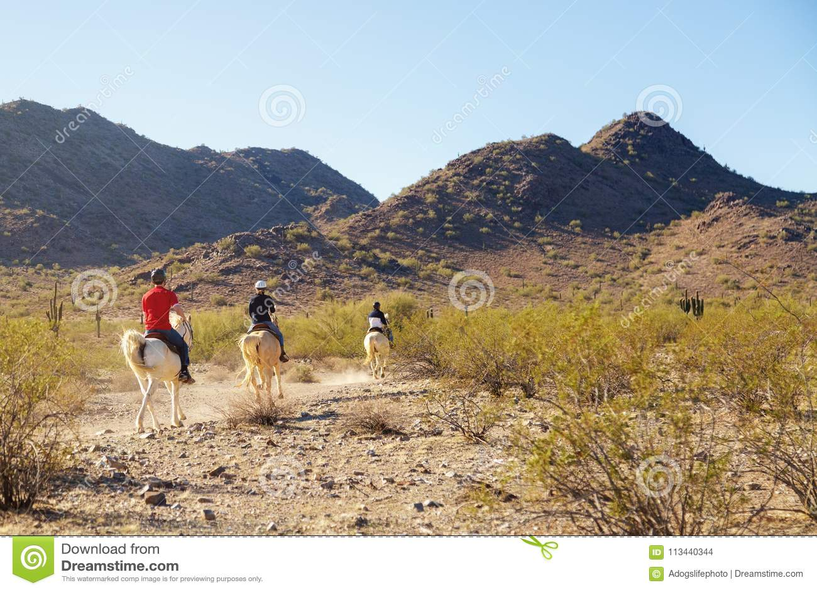 Horseback jazda Przez Arizona pustyni