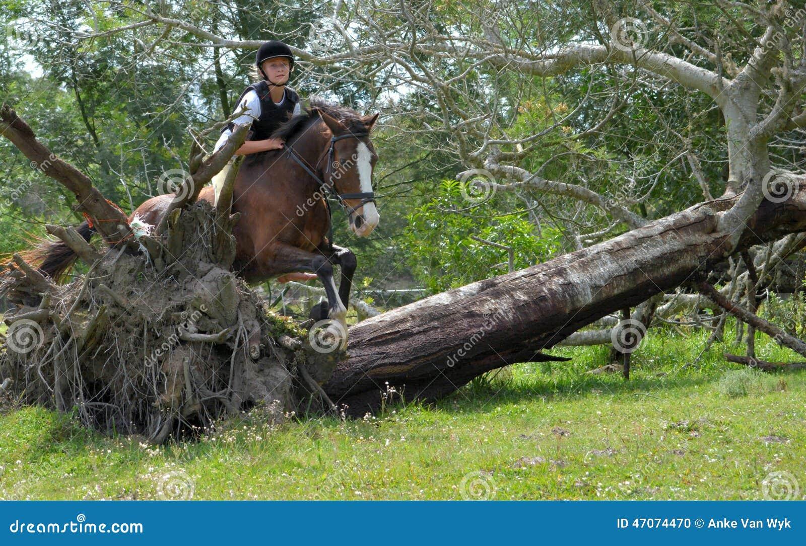 Horseback przecinającego kraju jazda