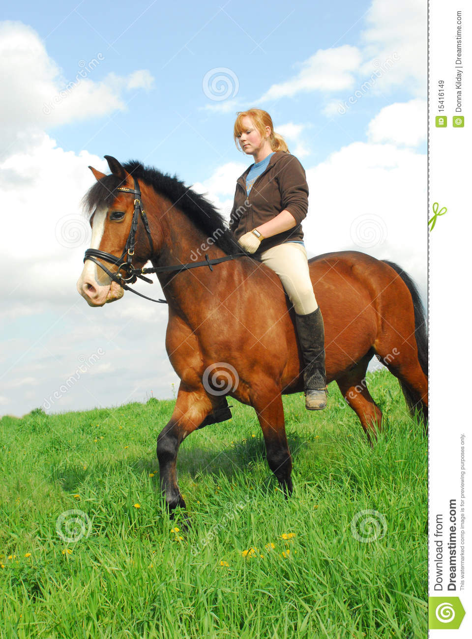 Thought redhead keer bareback consider