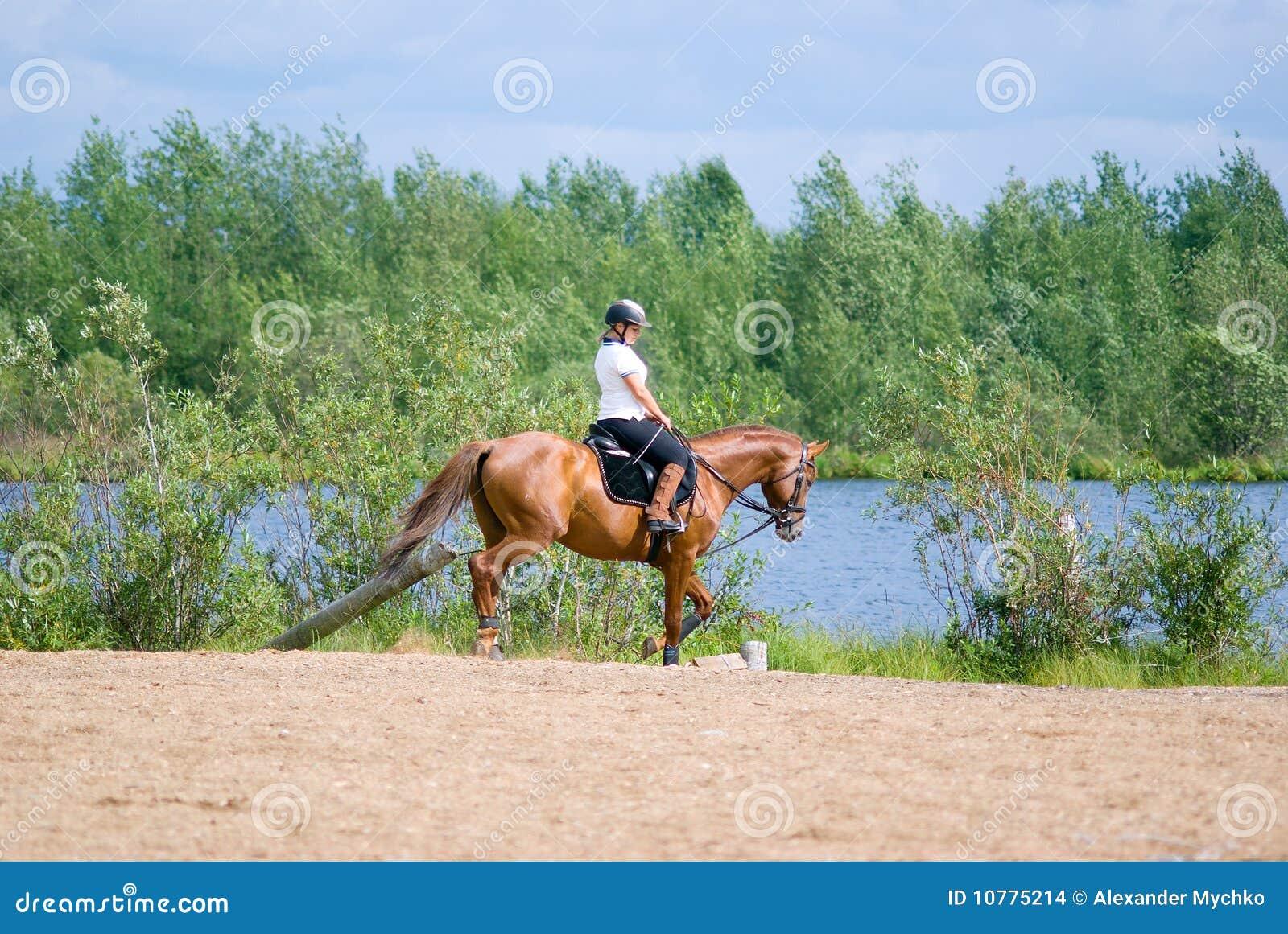 Horseback van het meisje op sprongen