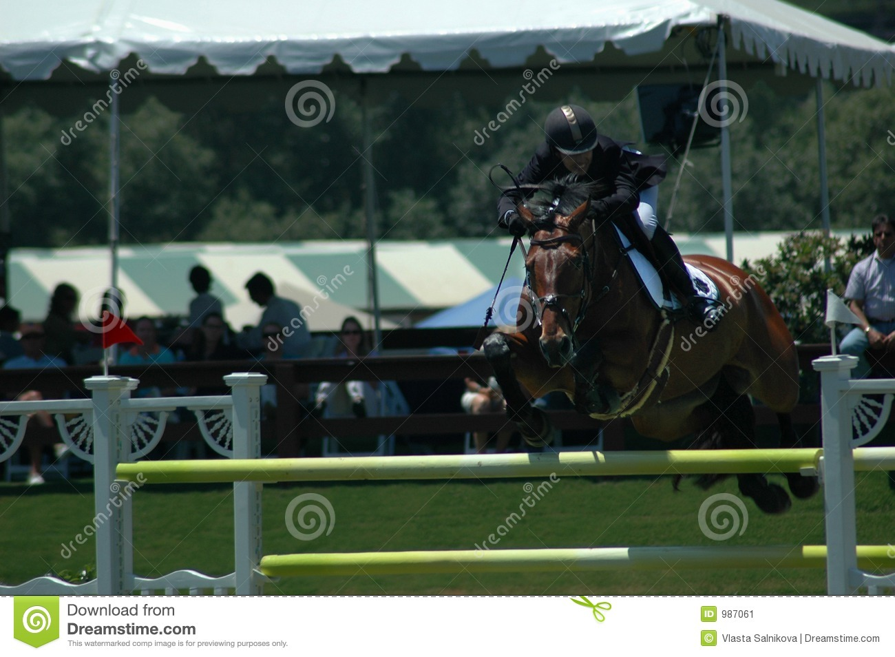 Horsejumping