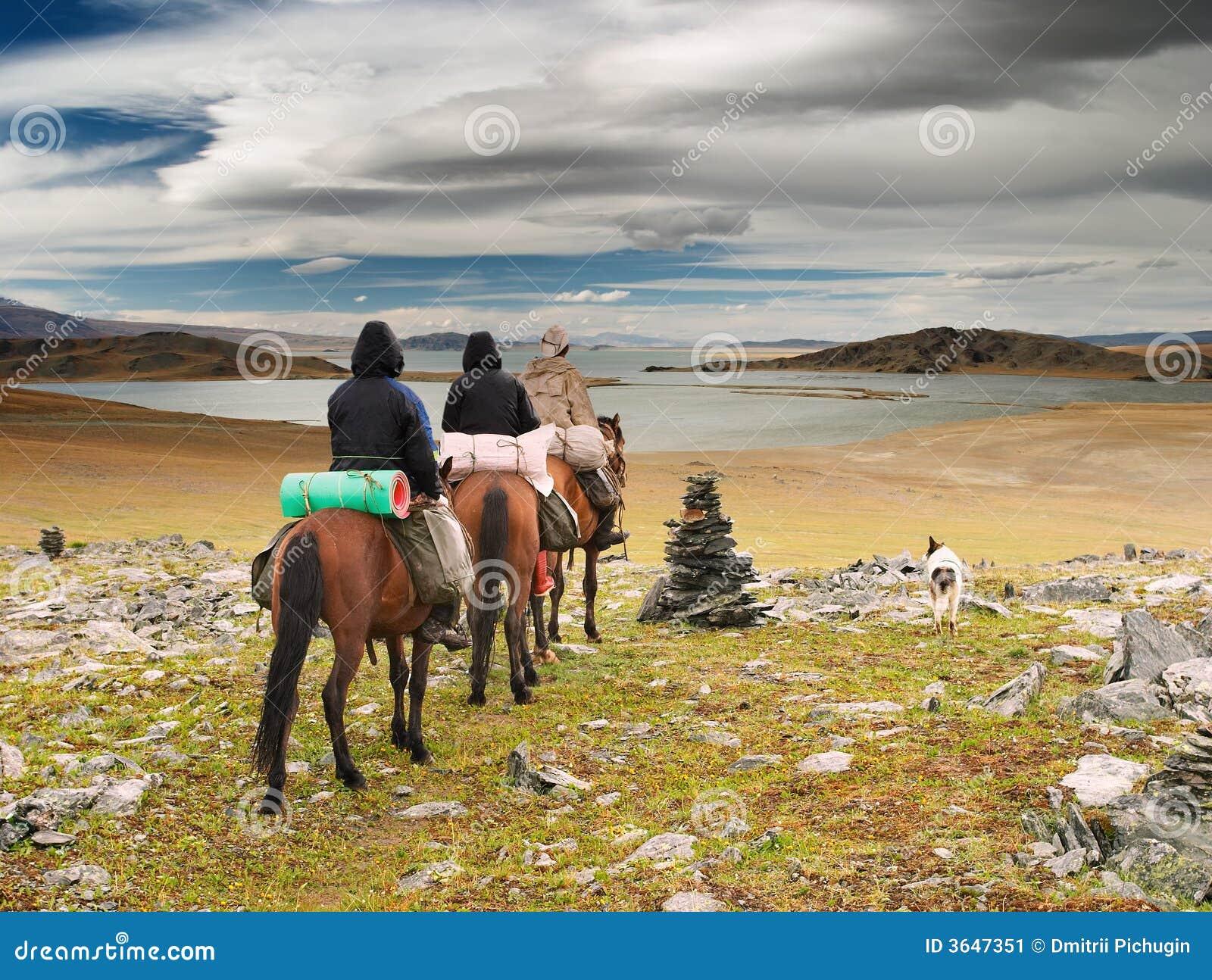 шлюхи из монголии