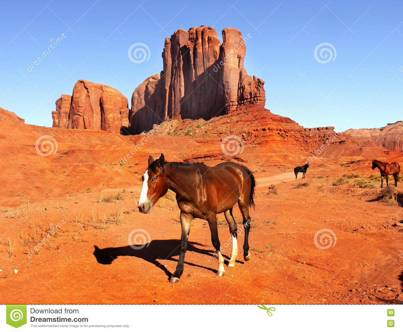 The Valley of Horses (Earths Children, Book 2) by Jean M. Auel