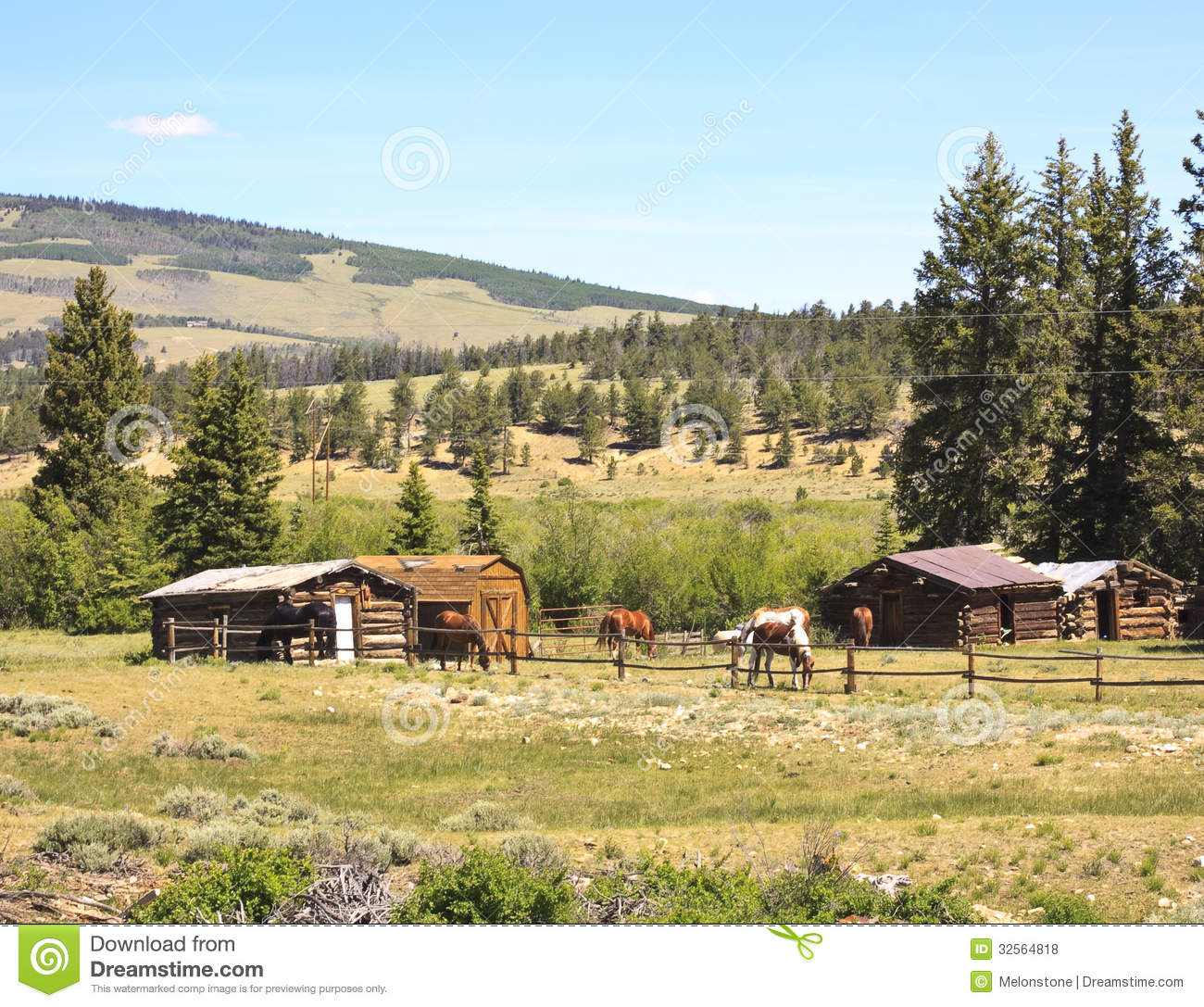 Horses In Ranch Corral Royalty Free Stock Photos Image