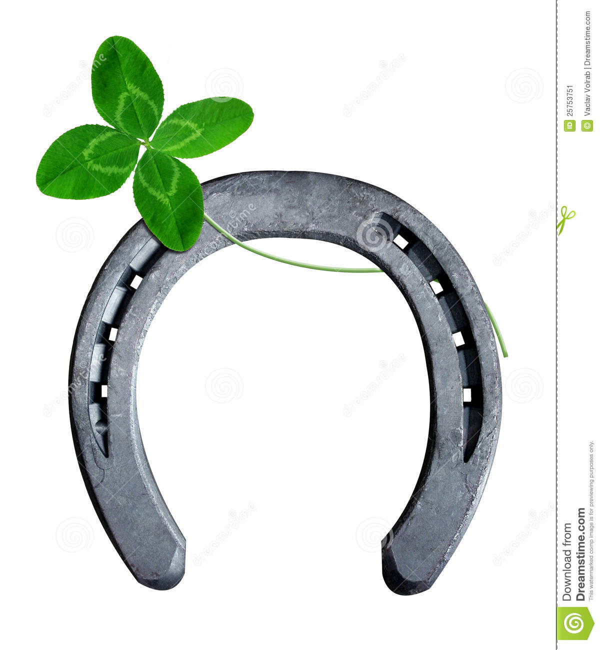 Horseshoe With Clover Stock Image - Image: 25753751: dreamstime.com/stock-image-horseshoe-clover-image25753751