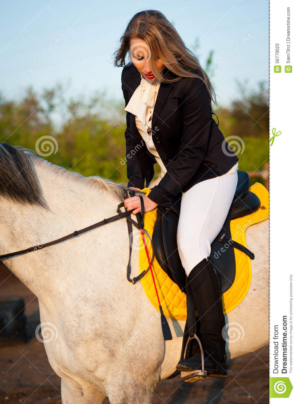 Horsewoman at hippodrome and blue sky